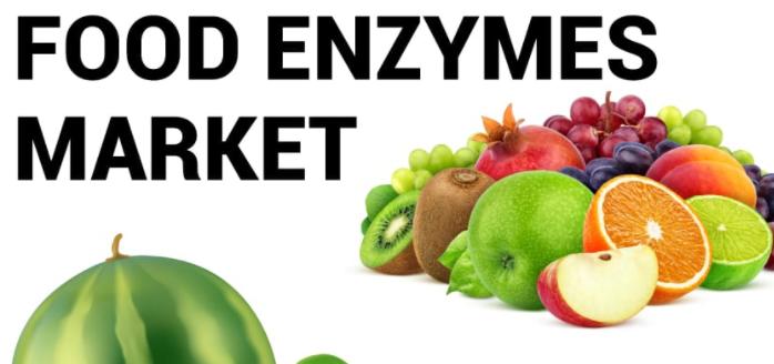2027 yılına kadar Gıda Enzimleri Pazar Payı, Küresel Analiz, Talep, Görünüm ve Tahmin